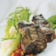 grilled ginger lamb loin chops